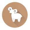 Horoscope sign Capricorn