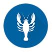 Horoscope sign Scorpio